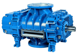 RB-DV Pre-inlet Vacuum Pumps